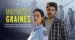 Mauvaises Graines sur France 3 : c'est quoi ce téléfilm avec Patrick Fiori ?