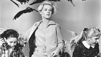 L'image du jour : le calvaire de Tippi Hedren sur le tournage de Les Oiseaux d'Hitchcock